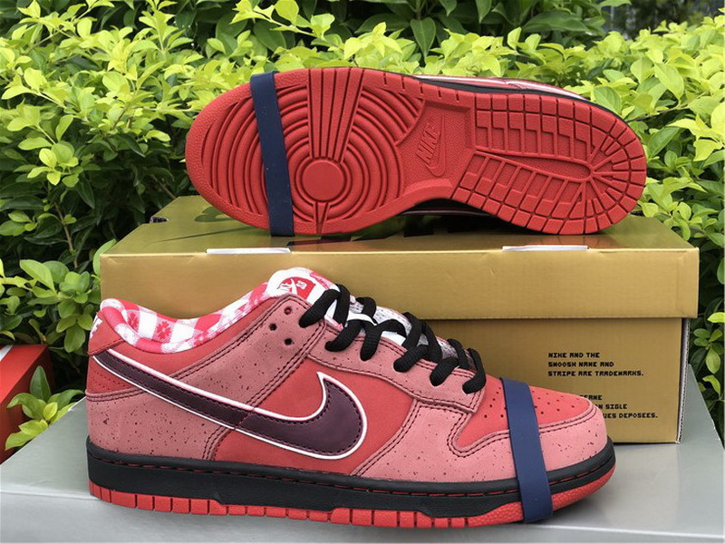 Authentic Nike Dunk Low SB Lobster Red Color