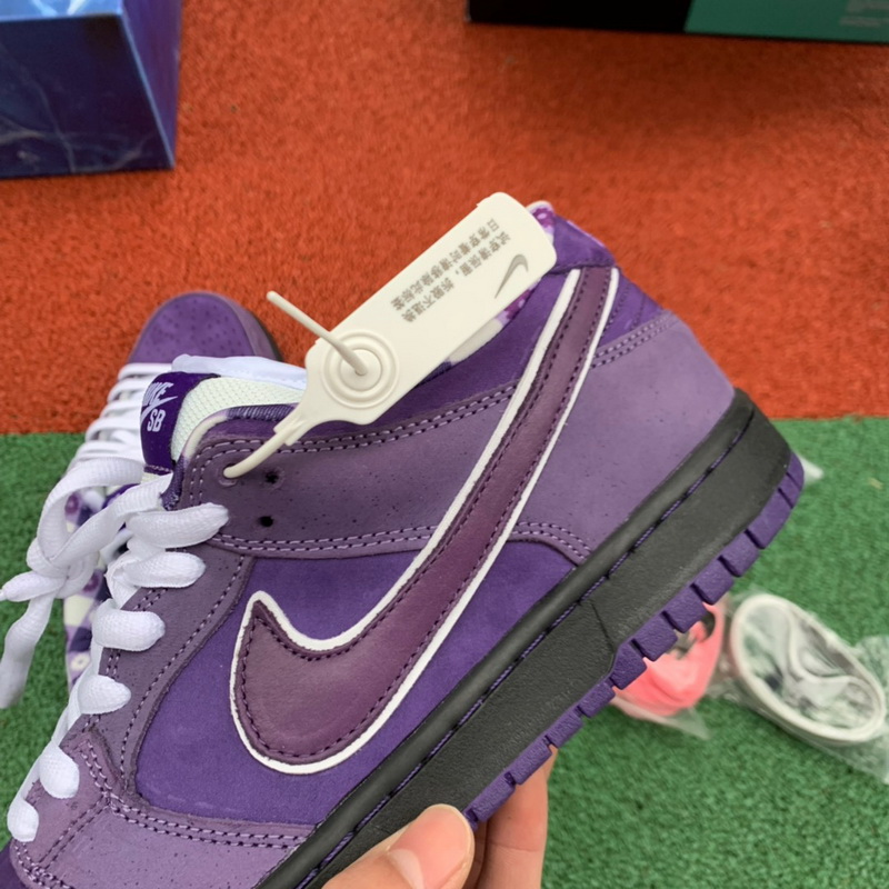 Authentic Nike Dunk SB Concepts Purple Lobster GS